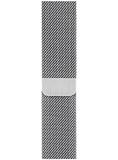 Apple Миланский сетчатый браслет (для корпуса 40 мм) Серебристый